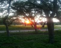 sunsetcabin