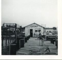 Gautier & Byrd-Bait Shop, Boat Dealership